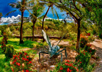 Tropical Garden by Omaste Witkowski owfotografik.com