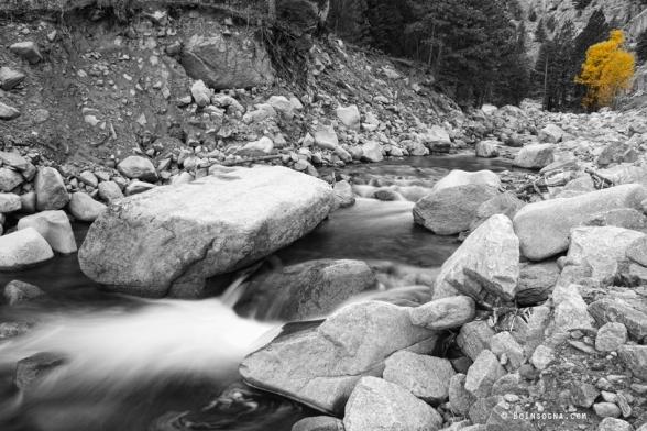 A Long South St Vrain Canyon Autumn View Bwsc Metal Print